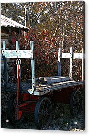 Old Wagon Acrylic Print by Stuart Turnbull
