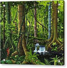 Osa Peninsula Rainforest Acrylic Print