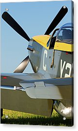P51 Mustang Acrylic Print by Timothy McIntyre