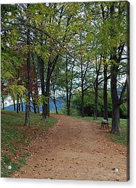 Pathway Acrylic Print by Eric Liller