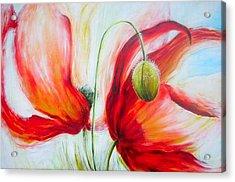 Poppies. Acrylic Print by Jacqueline Klein Breteler