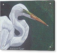 Profile In White Acrylic Print
