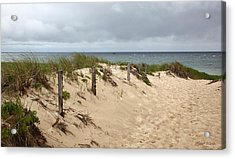 Race Point Beach Provincetown Massachusetts Acrylic Print by Michelle Wiarda