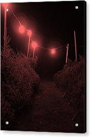Red Night Acrylic Print by John  Bichler