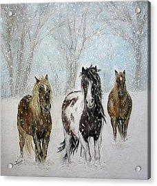 Snow Horses Acrylic Print by Teresa Vecere