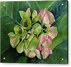 Acrylic Print featuring the painting Summer Beauty by Margit Sampogna