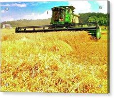 Summer Harvest Acrylic Print by Kevyn Bashore