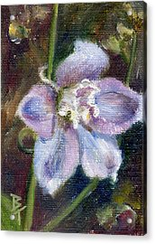 Acrylic Print featuring the painting Sweet Bloom Aceo by Brenda Thour