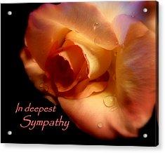 Sympathy Rose Acrylic Print