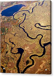 Acrylic Print featuring the photograph T-002 Twisted Wolf River by Bill Lang