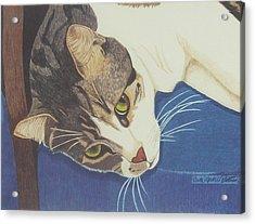 The Blue Chair Acrylic Print