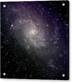 Triangulum Galaxy Acrylic Print by A. V. Ley