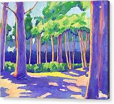 Wildcat Grove Acrylic Print