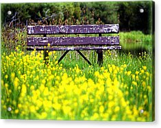 Wooden Bench Acrylic Print by Emanuel Tanjala