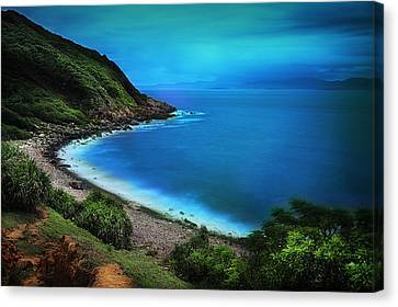 Canvas Print featuring the photograph Dreamlike Grass Island by Afrison Ma