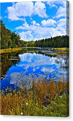 Fir Trees Canvas Print - Early Autumn At Fly Pond - Old Forge Ny by David Patterson