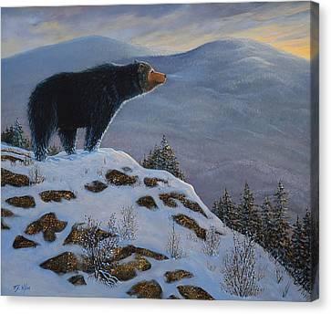 Last Look Black Bear Canvas Print by Frank Wilson