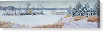 Winter Lake And Cedars Canvas Print by Garry McMichael