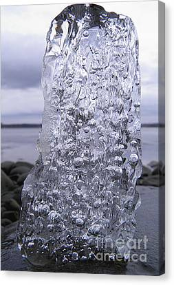 Canvas Print featuring the photograph Captured Icy Tears by Sami Tiainen
