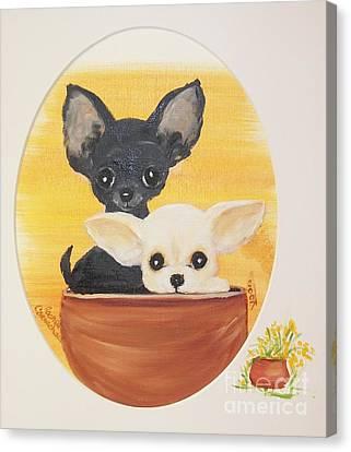 Pups In A Pot Canvas Print by Rachel Carmichael