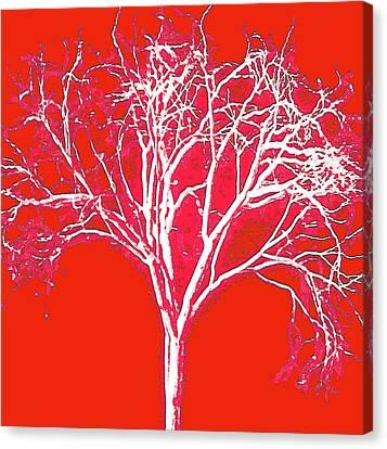 Imagination Tree Canvas Print by James Mancini Heath