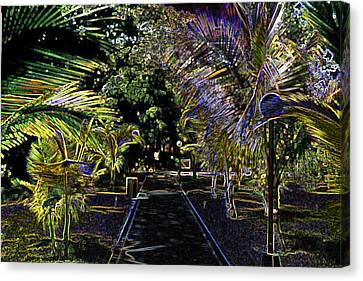 Canvas Print featuring the digital art Night In Mexico by Tammy Sutherland