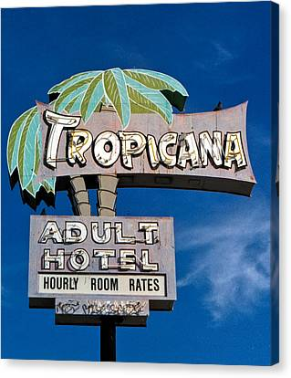 Tropicana Canvas Print by Matthew Bamberg