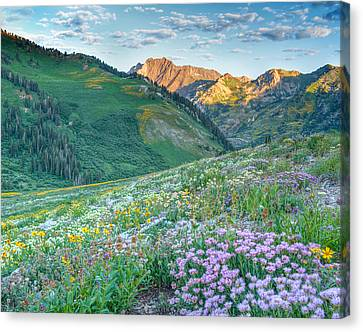 Wasatch Mountains Utah Canvas Print by Utah Images