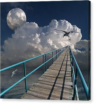 Sea Birds Canvas Print - 1875 by Peter Holme III