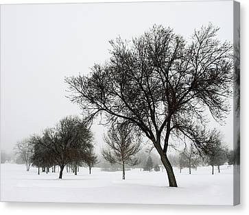 A Winter's Day Canvas Print by The Forests Edge Photography - Diane Sandoval