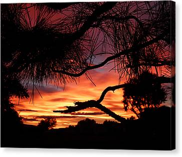 A Wishbone Sunset Canvas Print