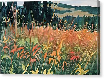 Alpine Autumn Canvas Print by Anne Havard