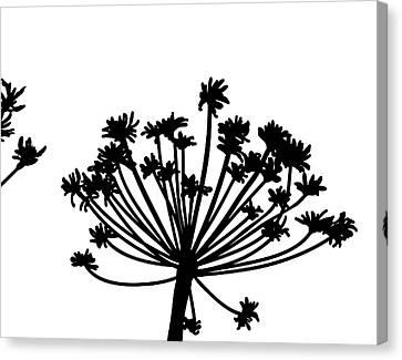 Black And White Dandelion Part 2 Canvas Print by Nomi Elboim