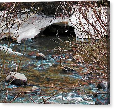 Canvas Print featuring the photograph Blue Water Creek by Tammy Sutherland