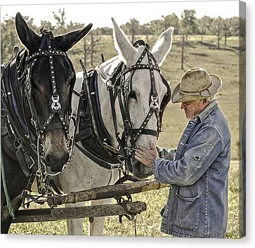 Bound By Trust Canvas Print by Ron  McGinnis