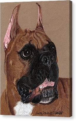 Boxer Vignette Canvas Print by Anita Putman