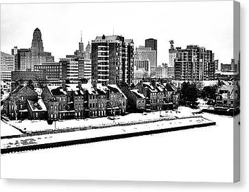 Buffalo In Black And White Canvas Print