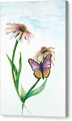 Butterfly Dance Canvas Print by Deborah Ellingwood