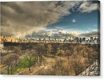 Central Park Springtime Canvas Print by Ariane Moshayedi