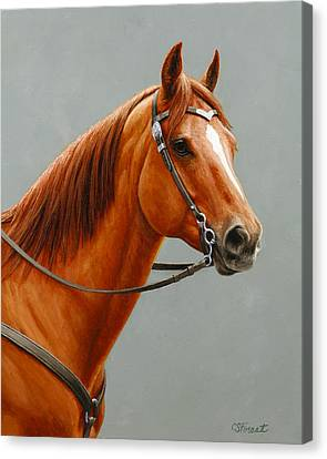 Chestnut Dun Horse Painting Canvas Print