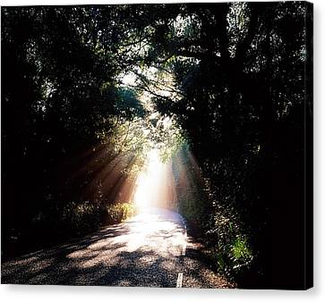 Country Road, Kenmare, Co Kerry, Ireland Canvas Print by The Irish Image Collection