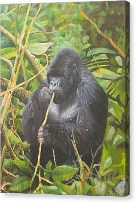 Deep In Virunga Jungle Canvas Print by Noe Peralez