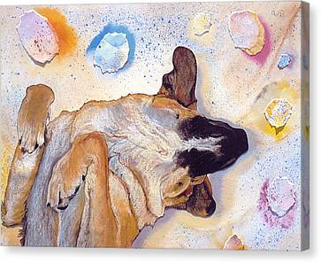 Dog Dreams Canvas Print by Pat Saunders-White
