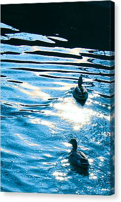 Canvas Print featuring the painting Ducks At Twilight by Ginny Gaura