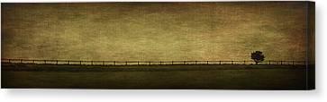 Farscape Canvas Print by Evelina Kremsdorf