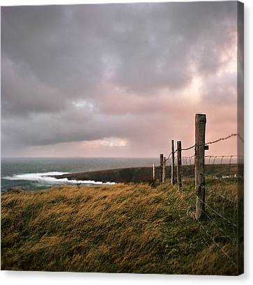 Barbed Wire Canvas Print - Fence In Ireland by Danielle D. Hughson
