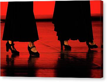 Canvas Print featuring the photograph Flamenco 2 by Pedro Cardona
