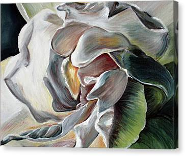 White Gardenia Canvas Print - Gardenia II by Tatjana Popovska
