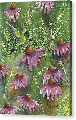 Coneflower Canvas Print - Gathering Nectar by Marsha Elliott
