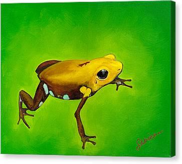 Golden Frog Of Supata Canvas Print by Sabina Espinet